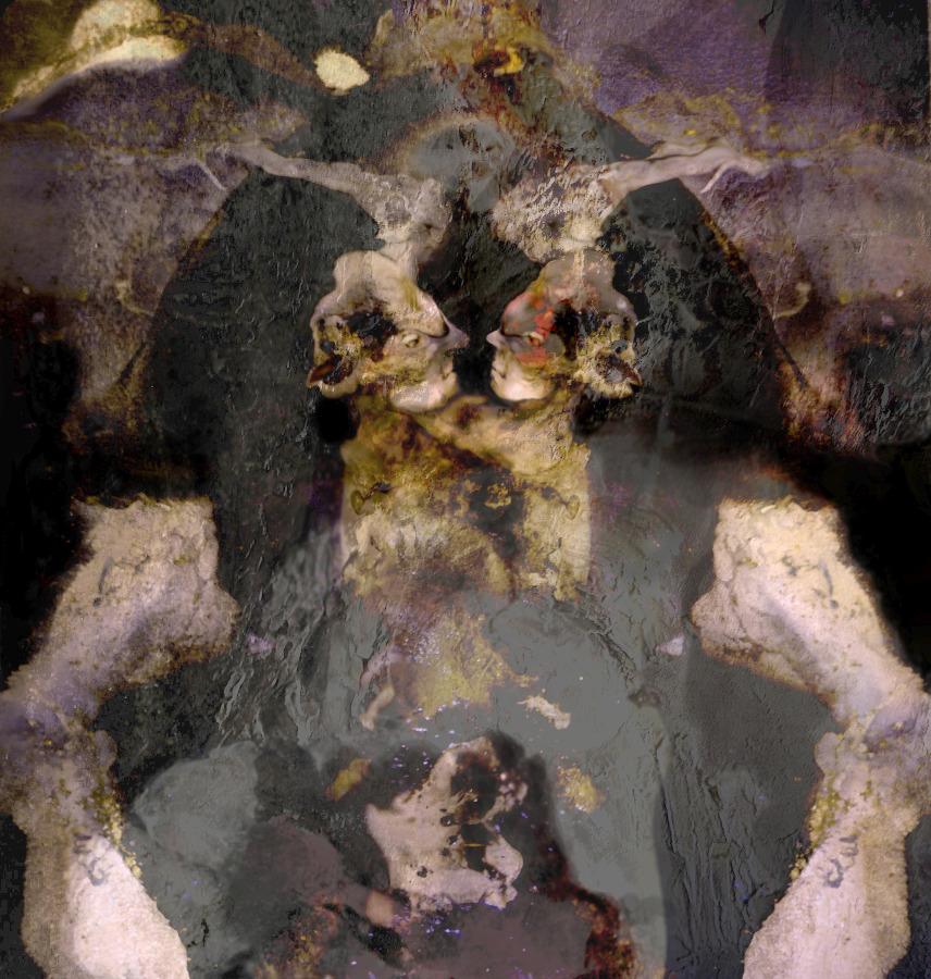 CATERINA ANNOVAZZI L'hermaphrodite couronné